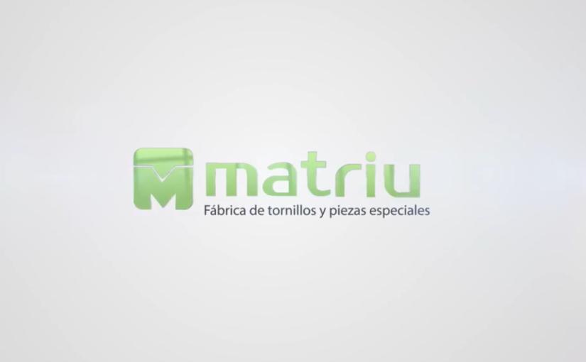 CASO DE ÉXITO MATRIU TORNILLERÍA: LOS RECOGEPEDIDOS MB DE EUROPEA DE CARRETILLA, UN AHORRO DEL 20% EN LA PREPARACIÓN DE CADA PEDIDO